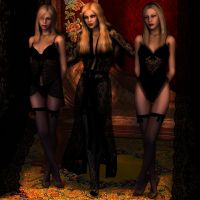lingerie by whitewillow2010