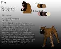 The Boxer Reference by ThisDyingDog