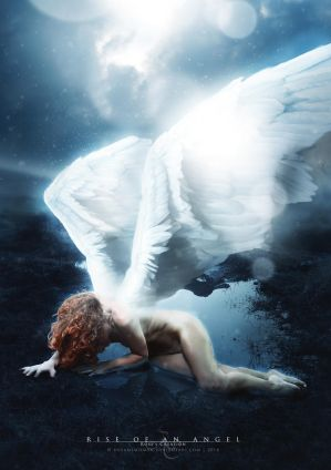 Rise of an angel by dreamswoman