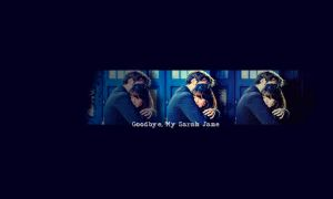 Goodbye My Sarah Jane: Simple by moirafae