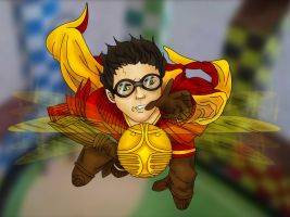 Quidditch by ANT3008