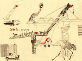 Cranes, Cranes and Automobiles by drawingsbycharlotte