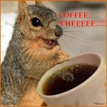 Squirrels and COFFEE... by VampireKoala95
