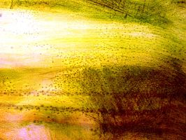Monoprint10 by pendlestock