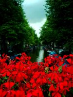 Amsterdam Canal by eclippse