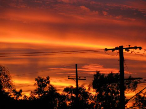 Suburban Sunset in Full Bloom3 by PinothyJ
