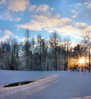 Spring is coming II by KariLiimatainen