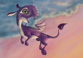 Baby Jitter and the sunset by dnesha