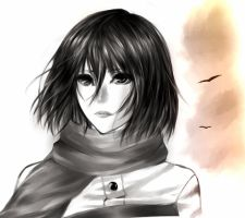 Mikasa by person2297