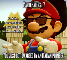 Mario Haters meme by IcePony64
