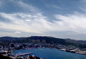 Wellington - New Zealand by bidwell