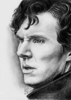 Sherlock by Miss-Catherine