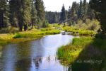 The Feather River by Scooby777