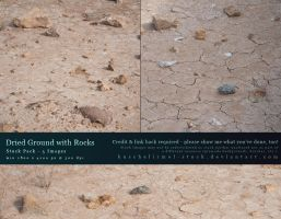 Dried Ground with Rocks - Stock Pack by kuschelirmel-stock