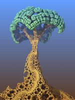 Menger tree by bunnywithrose