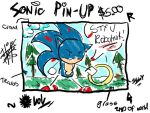 ELITE SONIC PINUP by SkyPirateDash