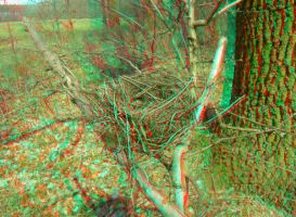Nest 3D Anaglyph by yellowishhaze