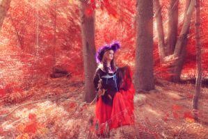 Pyrate Amid Red Autumn Foliage by BlackUniGryphon
