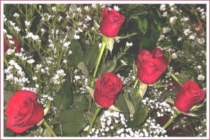 Artistic Roses by IdeandoGrafica