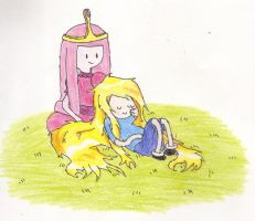 Finn and Princess Bubblegum by snapperboy