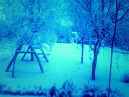 Winter...my Garden.^^ by NocteBruti