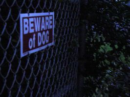 Beware Of Dog by armageddon