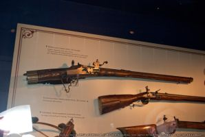 Museum : Guns 12 by taeliac-stock