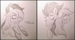 Rainbow dash and Soarin are in Love by miesmauz