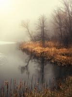 The Marsh by photorip