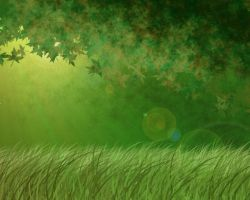 Forest Background by urie-is-mine