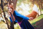 Spice and Wolf Holo Cosplay by FlowerOfMidgar