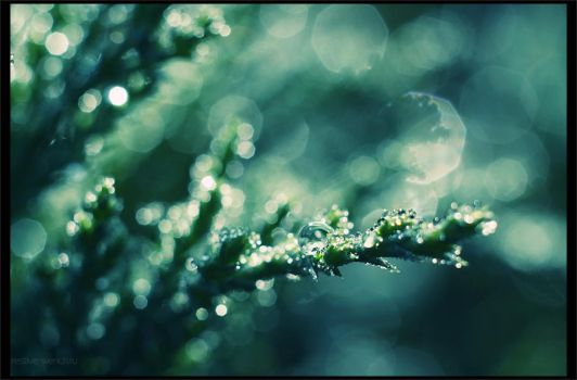 dew by restive-wench