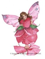 Rose Petal Fairy Holding Heart by JoannaBromley