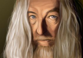 Gandalf by EnjoyPorno