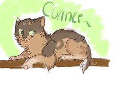 Conner for Chibi-1-chan by AutumLeavesofFall