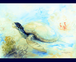 Mrs Turtle by ThalassaNord