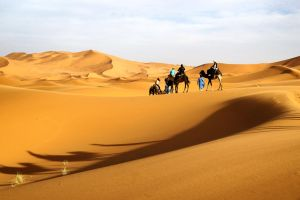 Sahara Desert by CitizenFresh