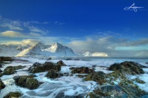 Vareid - Lofoten Islands by Stridsberg