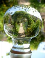 garden path refraction by April-Mo