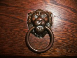 Lion Handle by Rubyfire14-Stock