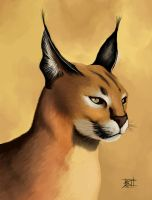 Caracal by TheRisingSoul