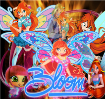 Bloom by Wizplace
