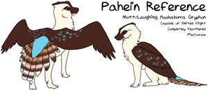 Pahein Reference by pahein