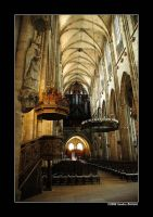Dom of Halberstadt 4 by grugster