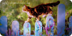 shop banner by trigby