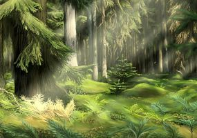 Forest by Sigyn85