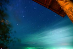 The starry night by drewhoshkiw