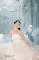 The Snow Queen by amethystmoonsong