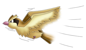 Pokedex 016: Pidgey- Quick Attack by izka197