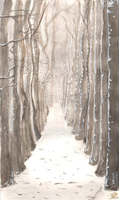 Winter path by VictoriaChickie